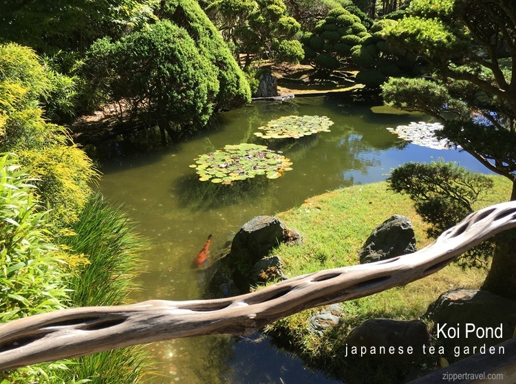 Golden gate park san francisco zippertravel for Koi pond japanese tea garden san francisco
